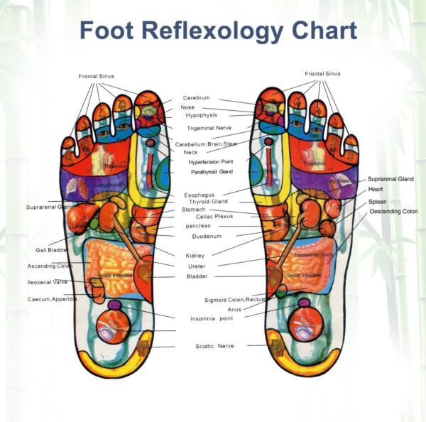 Detox Foot Patches Pads CookingOrbit.pk